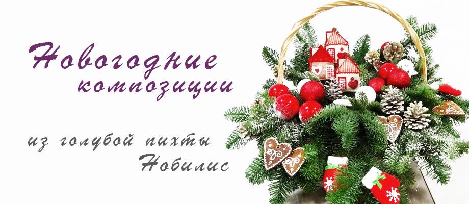 Новогодние композиции из Нобилиса