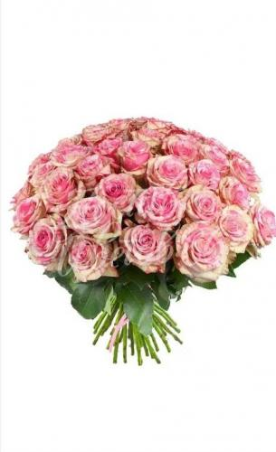 "Роза сорта ""Magic times"", 60 см"