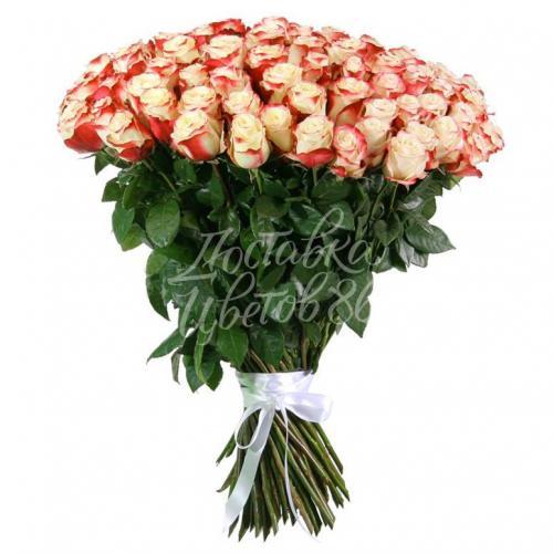 "Роза сорта ""Swetness"", 80 см"