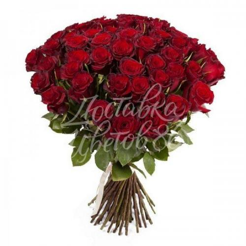 """25 красных роз сорта """"Explorer"""", 70 см"""