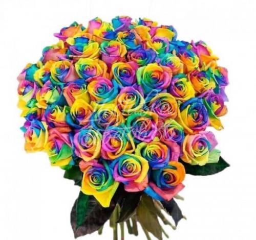 Радужная роза. Эквадор 60см